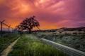 Картинка закат, пейзаж, забор, HDR, дорога