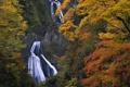 Картинка осень, скалы, водопад