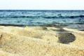 Картинка песок, море, Макро, venitomusic