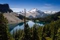 Картинка лес, деревья, горы, природа, озеро