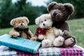 Картинка игрушки, книга, плюшевые мишки