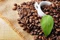 Картинка лист, кофе, чашка, зёрна, циновка