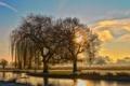 Картинка небо, облака, деревья, закат, туман, пруд, парк