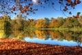 Картинка осень, небо, листья, деревья, природа, отражение, река