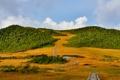 Картинка небо, трава, деревья, озеро, гора, дорожка