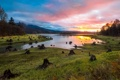 Картинка Sunset, Landscape, Alder Lake
