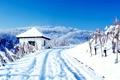 Картинка Природа, Зима, Снег, сугробы, Пейзаж, погода, wallpapers