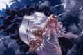 Картинка платье, круги, shingetsutan tsukihime, девушка, вода, feitie, волосы