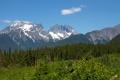 Картинка лес, деревья, горы, природа, Аляска, Alaska