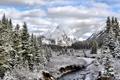 Картинка Alberta, Mt Engadine, Snowy Autumn