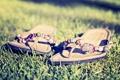 Картинка трава, сланцы, луг, зелень, обувь. лето, обои для рачбоего стола, HD walppapers