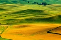 Картинка осень, трава, холмы, поля, Италия