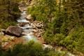 Картинка лес, деревья, ручей, камни, США, Glacier National Park, Montana