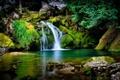 Картинка трава, деревья, камни, водопад, мох, ель