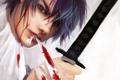 Картинка кровь, катана, арт, парень, Hijikata Toshiro