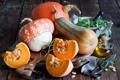 Картинка осень, листья, масло, тыквы, овощи, ножницы, бутылочка