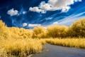 Картинка небо, природа, озеро, цвет