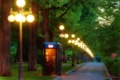 Картинка будка, фонари, аллея, вечер, огни, дорожка, деревья