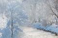 Картинка зима, снег, река, Австрия, деревь, Зальцах