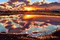 Картинка небо, кот, облака, закат, озеро, отражение, арт