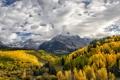 Картинка осень, лес, облака, горы, Колорадо, Colorado