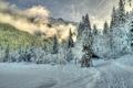 Картинка зима, лес, облака, снег, туман, холмы, ель