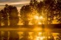 Картинка небо, солнце, лучи, деревья, пейзаж, закат, река