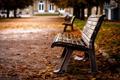 Картинка листья, осень, лавочка, пасмурно, скамейка