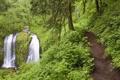 Картинка лес, водопад, тропинка