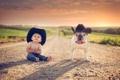 Картинка дорога, собака, мальчик, друзья, шляпы
