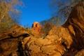 Картинка небо, скалы, деревья, гора