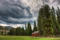 Картинка леса, деревья, дома, фото, природа, пейзажи