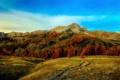 Картинка осень, трава, деревья, горы, камни, Франция, Альпы