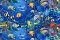 Картинка рыбки, Christian Riese, аквариум, голубое, красиво, Lassen, море