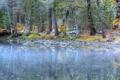 Картинка природа, лес, река, осень