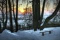 Картинка зима, деревья, закат, скамья