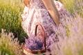 Картинка цветы, природа, лицо, женщина, Девушки, лаванда