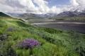 Картинка трава, облака, цветы, горы, камни, холмы, русло