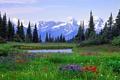 Картинка пейзаж, горы, деревья, цветы