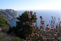 Картинка природа, фото, побережье, Франция, French Riviera