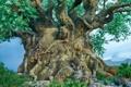 Картинка животные, дерево, ветви, фигуры, резьба