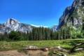 Картинка деревья, горы, природа, фото, дерево, обои, пейзажи