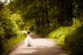 Картинка дорога, зелень, природа, парк, девочка