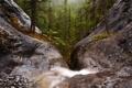 Картинка лес, водопад, каньон, США, Heart Creek Canyon