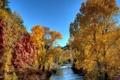 Картинка осень, деревья, скалы, речка