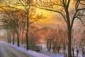 Картинка зима, дорога, закат, природа