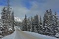 Картинка зима, дорога, Banff National Park