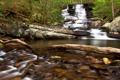 Картинка лес, река, камни, водопад, Georgia, Chatsworth, Emery Creek Trail