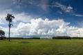 Картинка небо, деревья, голубое, Nature, national, geographic, зелёный луг