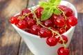 Картинка ягоды, красная смородина, redcurrant, миска